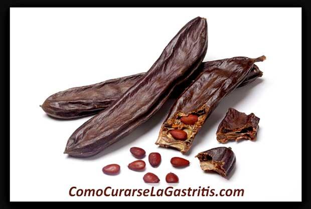 Semillas de algarrobo para gastritis
